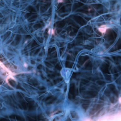Scientists have created the worlds first artificial neuron