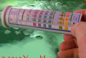 Test d'eau bandelettes