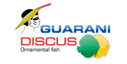 Logo Guarani discus