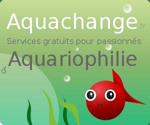 Aquachange site d'échange vente poissons d'aquarium