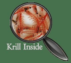 Krill contenu dans la nourriture Dennerle