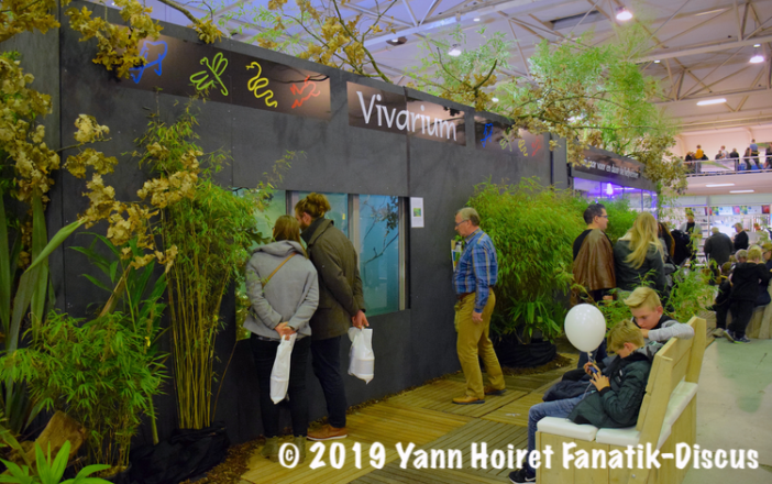 Aquarium Biotop XL - Terrarium XL Vivariurm 2018 Rosmalen