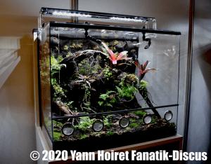 Aquaterrarium Vivarium 2019