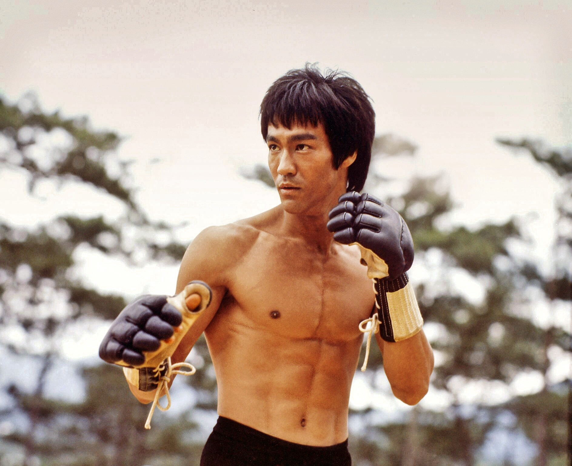 List Of World Top 10 Greatest Martial Artists