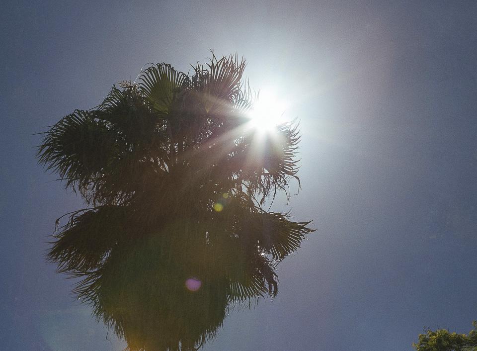 07 boda en dia soleado
