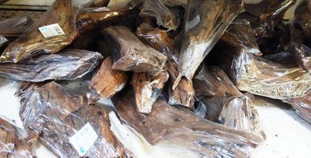 Troncos de madera para acuario, problemas y soluciones 1