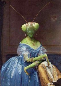 Mantis posando para que la pinten en lienzo.