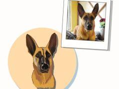 Explicar retratos de mascotas
