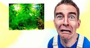 filtro del acuario ruidoso, soluciones