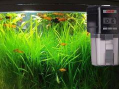 Comederos automaticos para peces recomendables