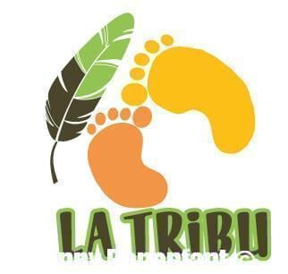 La Tribu – Logo projet d'étude