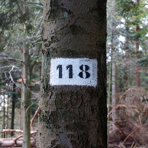 Chiffre 118 Forêt