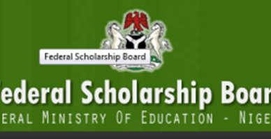 Federal Government Scholarship for Nigerian Undergraduate