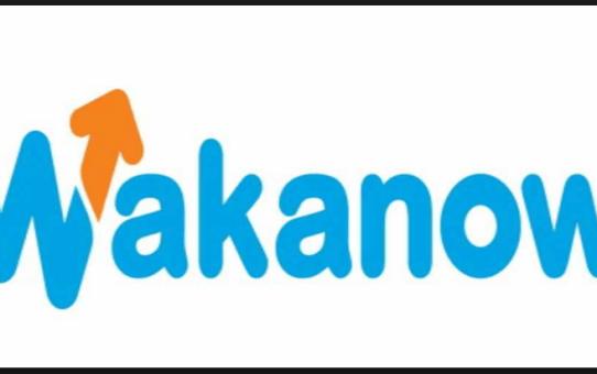 Wakanow Online Booking