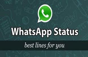 WhatsApp Status 2017-Latest