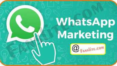 Whatsapp Marketing - How to Use Whatsapp For Marketing – Whatsapp Marketing for Business| Whatsapp Marketing Group
