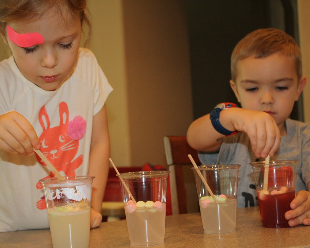 Marshmallow Science Experiment