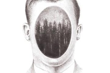 Los Bosques Imantados