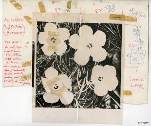 Billabong x Andy Warhol