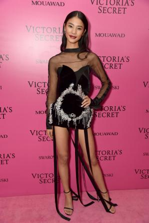 Wang Yi @ Victoria's Secret Show 2017