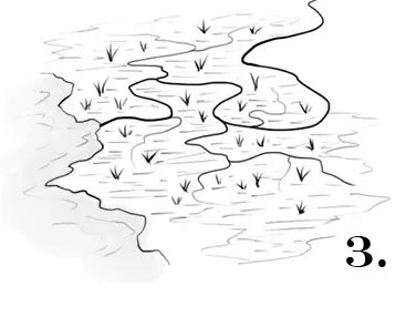How to draw swamps for fantasy maps