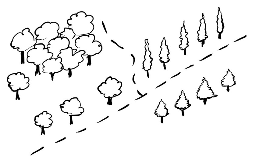 1. Start by drawing clouds on sticks - here's three different types of trees on a map