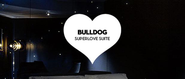 bulldogsuite