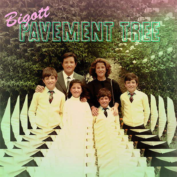bigott-pavement-tree