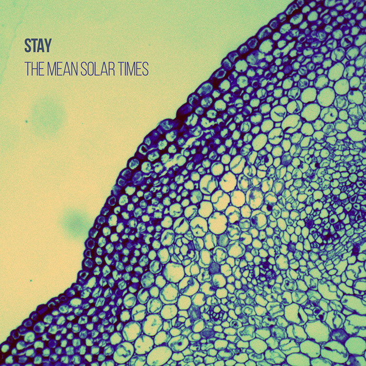 """Stay: """"The Mean Solar Times"""""""