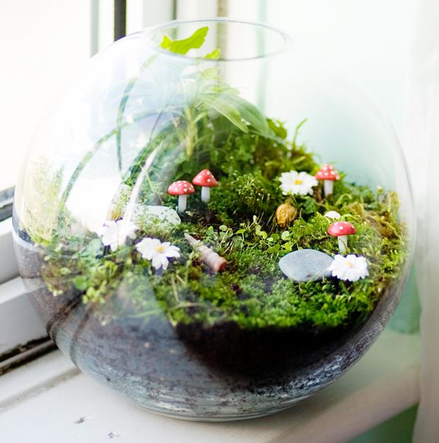 Cómo hacer un terrario de echar un vistazo a estos hongos musgo 10 ideas adorables bricolaje gnomos suculentas DIY fácil container8 lindo jardín interior 15 obras maestras miniatura terrarios inspirarse Creativa De