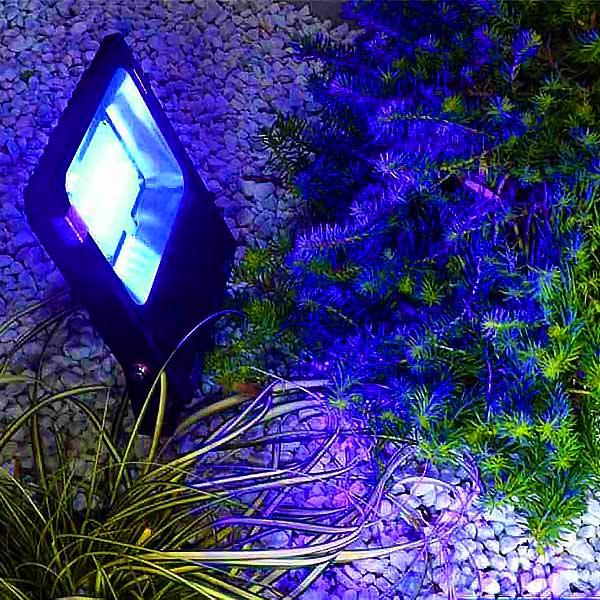 RGB CCT LED Floodlight
