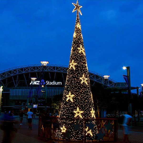 Christmas Outdoor Tree Lighting