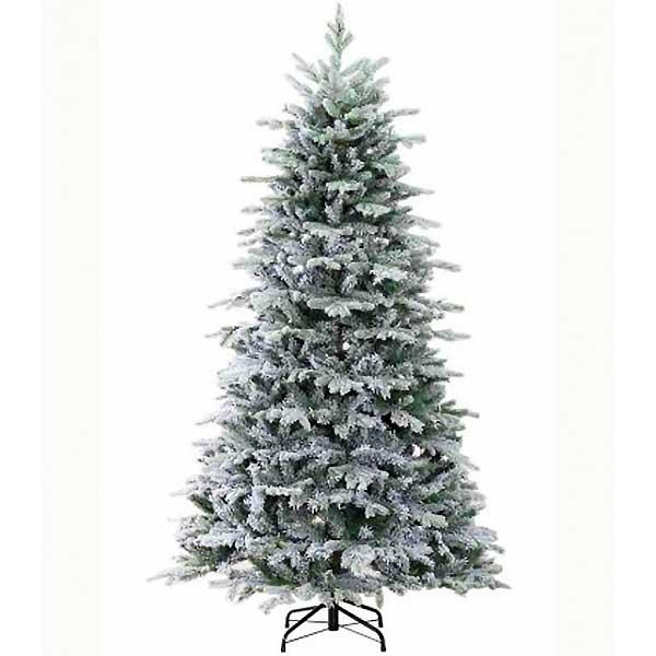 Englewood Fir 75ft Christmas Tree