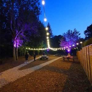 Festoon Lights 10Mtr