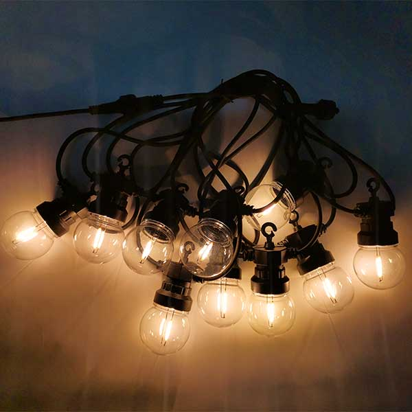 20 LED Warm White Clear Festoon Party Lights