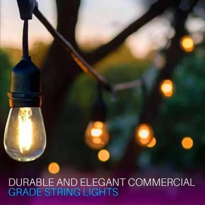 LED Filament String Lights