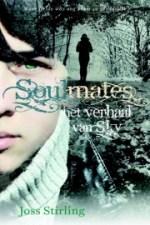 Soulmates 1: Het verhaal van Sky Boek omslag