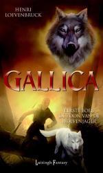 Gallica 1: De zoon van de wolvenjager Boek omslag