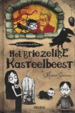 De Mysteries van de Raaf 1: Het griezelige kasteelbeest Boek omslag