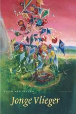 Jonge Vlieger Boek omslag