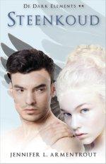 Dark Elements 2: Steenkoud Boek omslag