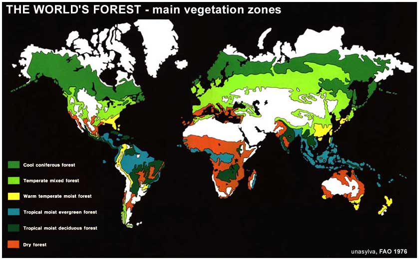 The forest class is characterized by west africa's dense tropical evergreen rain forest and moist deciduous forest, and a closed canopy cover (white, 1983). Unasylva No 112 113 Management And Utilization Of The Tropical Moist Forest From The Fao Committee On Forest Development In The Tropics Extracts Attempt At An Assessment Of The World S Tropical Moist Forests