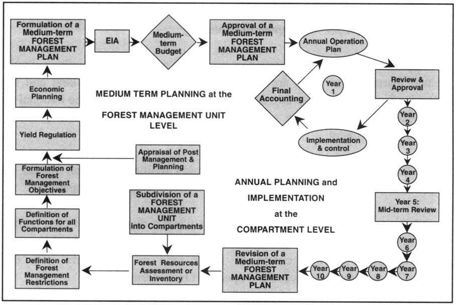 An introduction to silviculture eli sagor email_address · 2. 3 Guidelines For Forest Management Planning