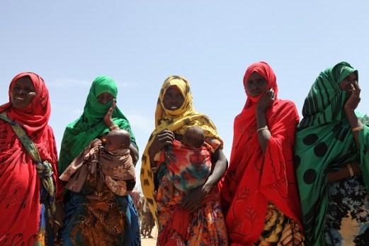 Drought-stricken herders in Ethiopia need urgent support 2