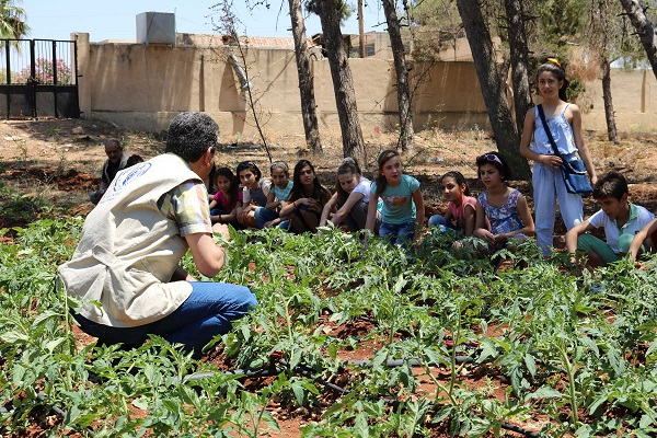The Syrian schools with edible playgrounds 2