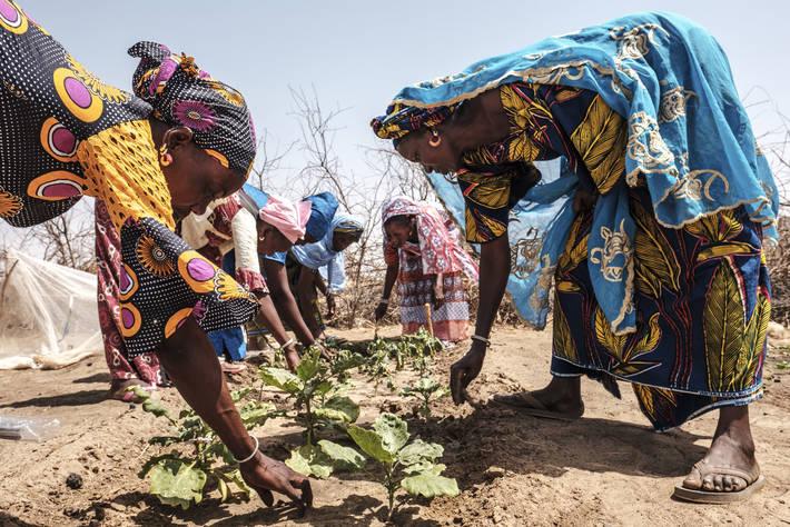Photo: ©FAO/Eduardo Soteras / FAO