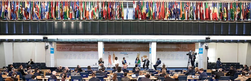 Image result for FAO symposium innovation family farmers