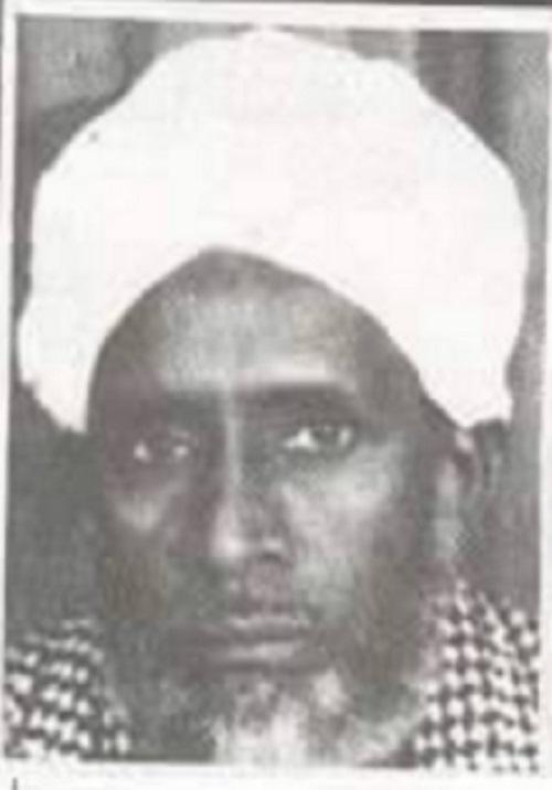 mohamed ibrahim shedali