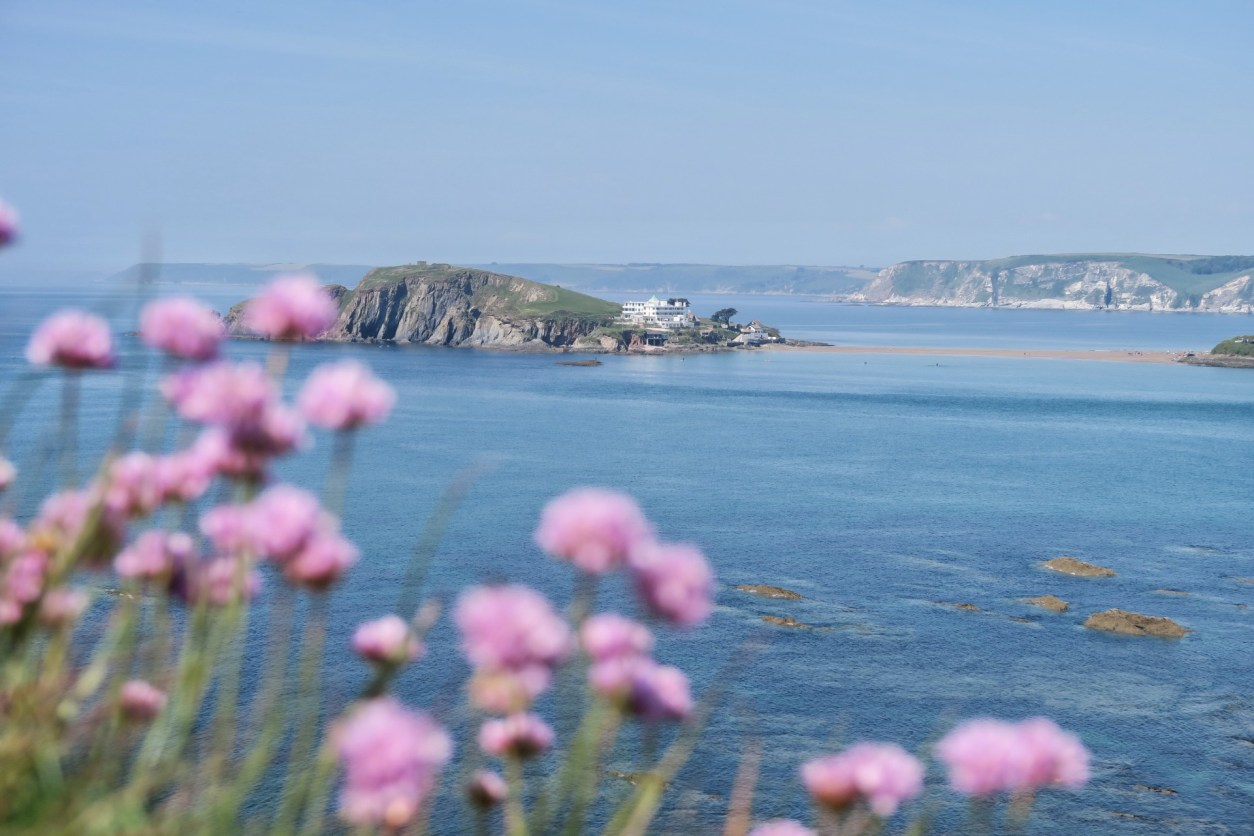 Burgh Island Devon. Island in the middle of a blue sea with a hotel on it. Pink flowers in foreground. 17 Beautiful Places to Visit in Devon for a Great Day Out. Devon England. Devon UK. Things to do in Devon. Places to see in Devon. What to see in Devon. Things to see in Devon. What to do in Devon. Devon attractions. Devon top attractions. Devon travel blog. Devon travel guide. The English Riviera. Exeter. Plymouth. Dartmouth. Dartmoor National Park. Exmoor National Park. Salcombe. Clovelly. Totnes. Appledore. Watermouth. Croyde. Woolacombe. Dartmouth. Ilfracombe. Beer. Burgh Island. Lundy Island. Click through to read more...
