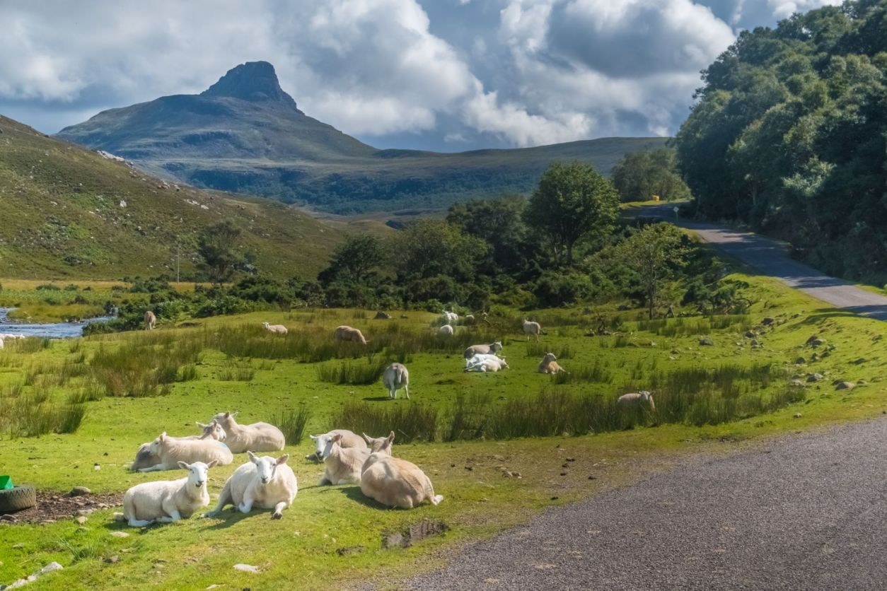 knockan-crag-national-nature-reserve-scenic-drives-in-scotland